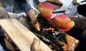 skogstur bålkos